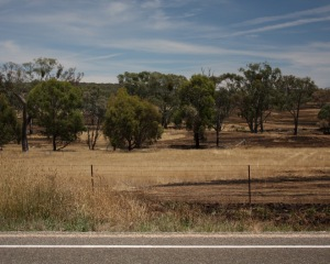 Burnt paddocks 1