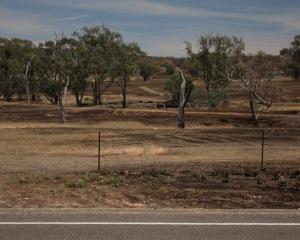 Burnt paddocks 2