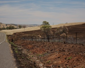 Burnt paddocks 3