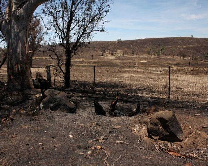 Burnt paddocks 5