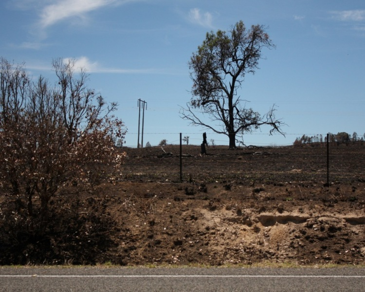 Boorowa grass fire, 27 December 2013