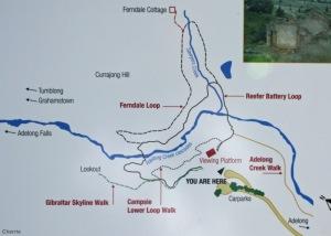 Adelong Map