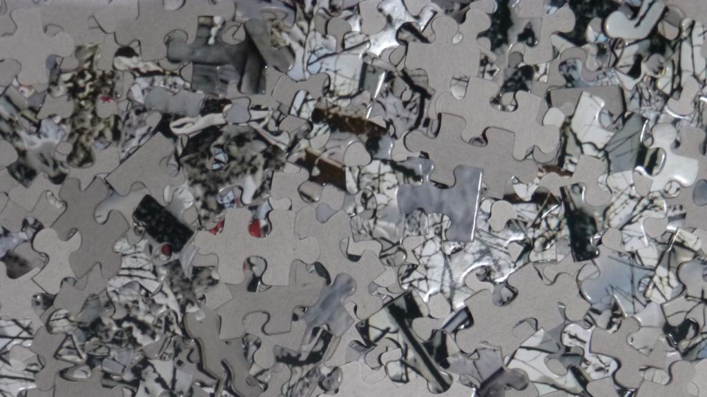 Jigsaw pieces in a box