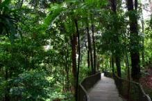 Botanic Garden 6