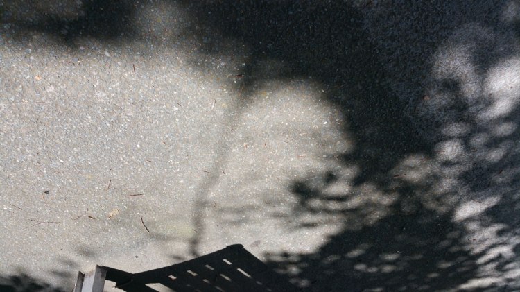 Shadows in chaos