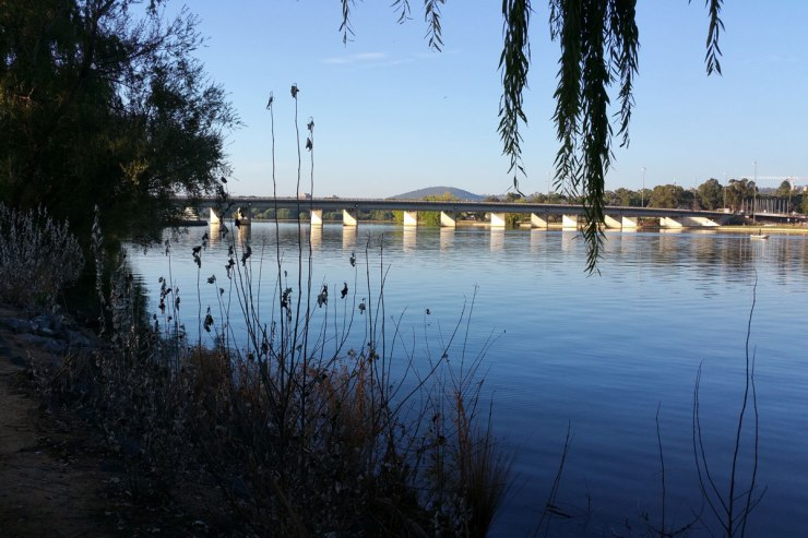 Aspen Island and Kings Avenue Bridge