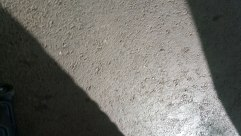 Shadows 20150124