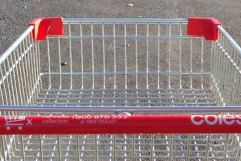 Grocery Trolley 1