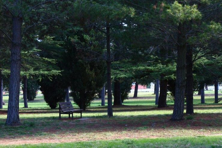 Haig Park 2