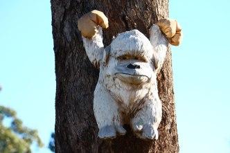 Moname Gap Road Bear 2