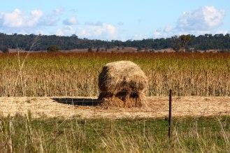 Moname Gap Road Haystack 1