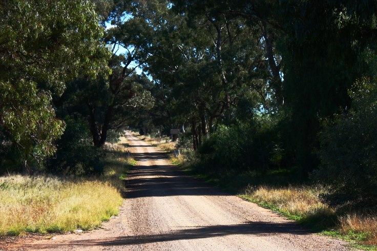 The Sandy Lane 2